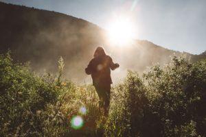 CBD Benefits | C A N N A R A Y