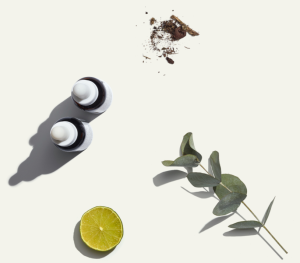 CBD tinctures with common ingredients