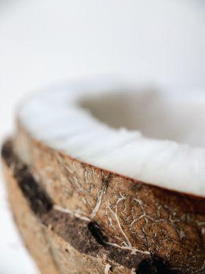 Coconut Oil MCT Carrier Oil for CBD | Cannaray CBD