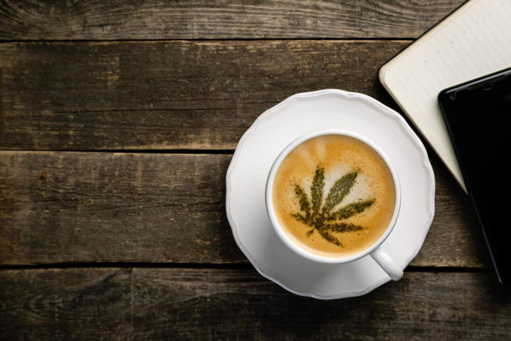 Marijuana Coffee leaf