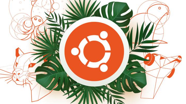 Ubuntu in the wild – 13th of April 2021