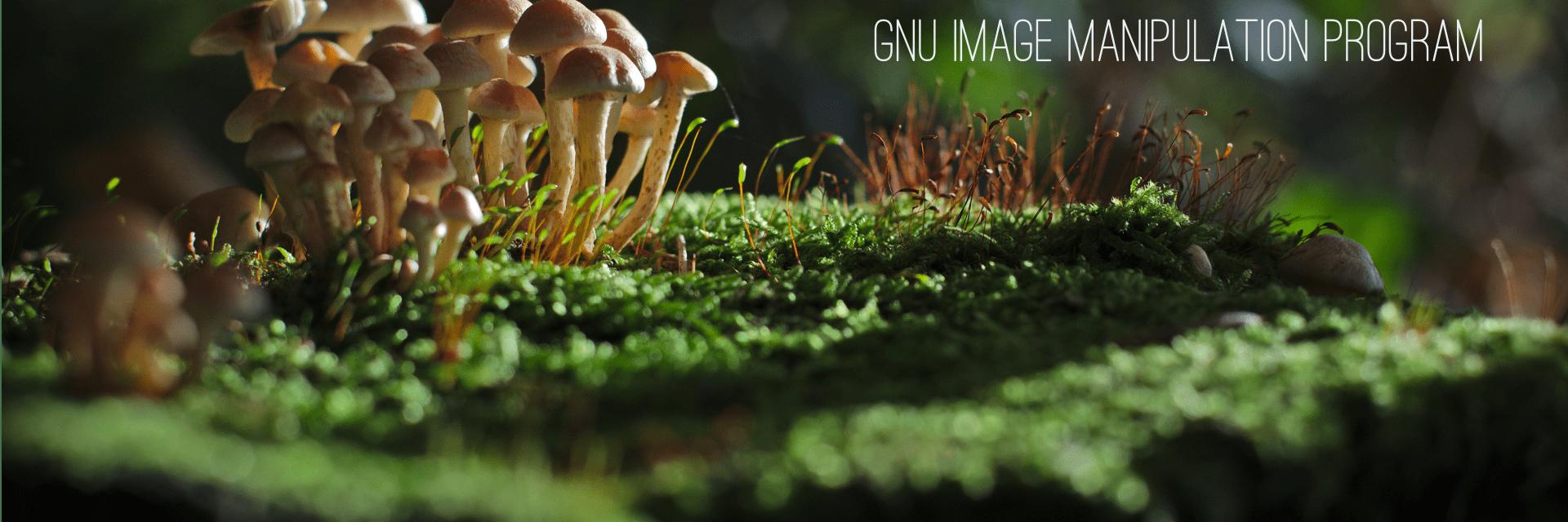 GNU Image Manipulation Program banner