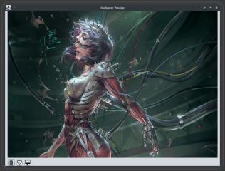 WallpaperDownloader screenshot