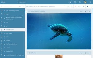 Gisto screenshot