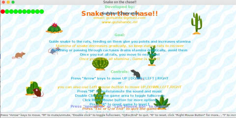 Snake on the chase screenshot
