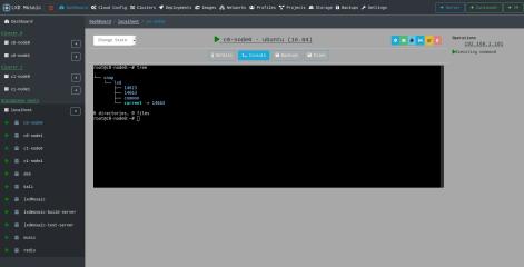 lxdmosaic screenshot