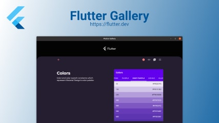 Flutter Gallery screenshot