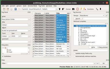 puddletag-snap screenshot