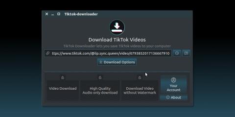 Tiktok Downloader for Linux screenshot