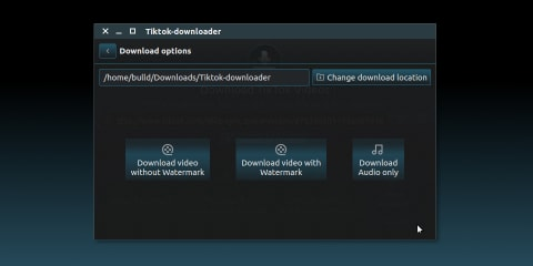 Tiktok Downloader for Linux screenshot
