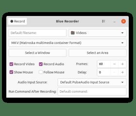 Blue Recorder screenshot