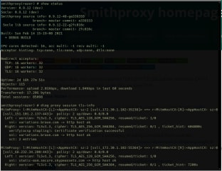 smithproxy screenshot