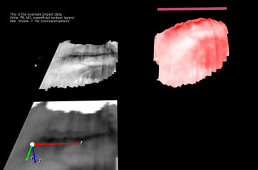 Stalefish: Spatial ISH Analysis screenshot