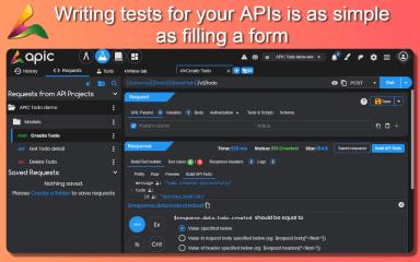 apic - The complete API solution screenshot