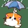 Icon of raincat