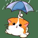 Icon for raincat