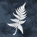 Icon for olan