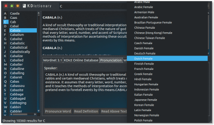 Install kdictionary on elementary OS using the Snap Store