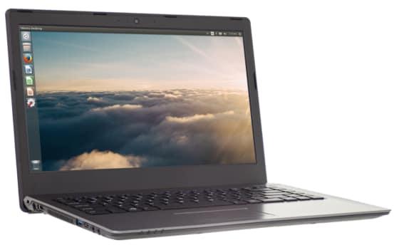 lemur-laptop