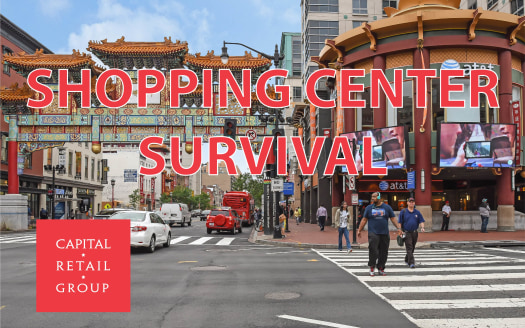 Blog SHOPPING CENTER SURVIVAL