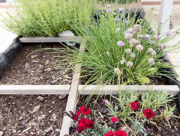 EHPAD les Jardins de Jeanne - Photo 12