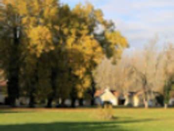 EHPAD - Chateau de Cresse - Photo 2