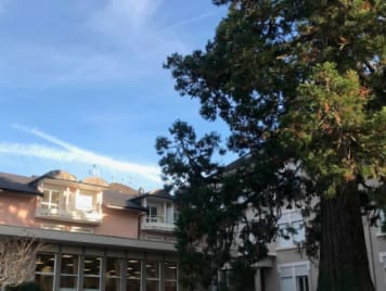 EHPAD de l'Ermitage - Photo 1