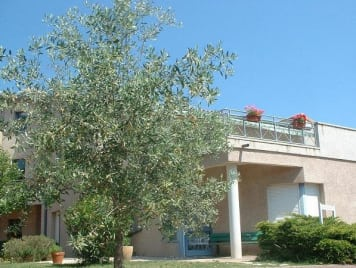 EHPAD de l' Hôpital Local de Buis-Les-Baronnies - Photo 1