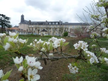 EHPAD Grand'maison des Sacrés-Coeurs - Photo 1