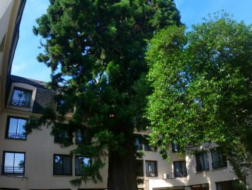 Residence le Sequoia - Photo 1
