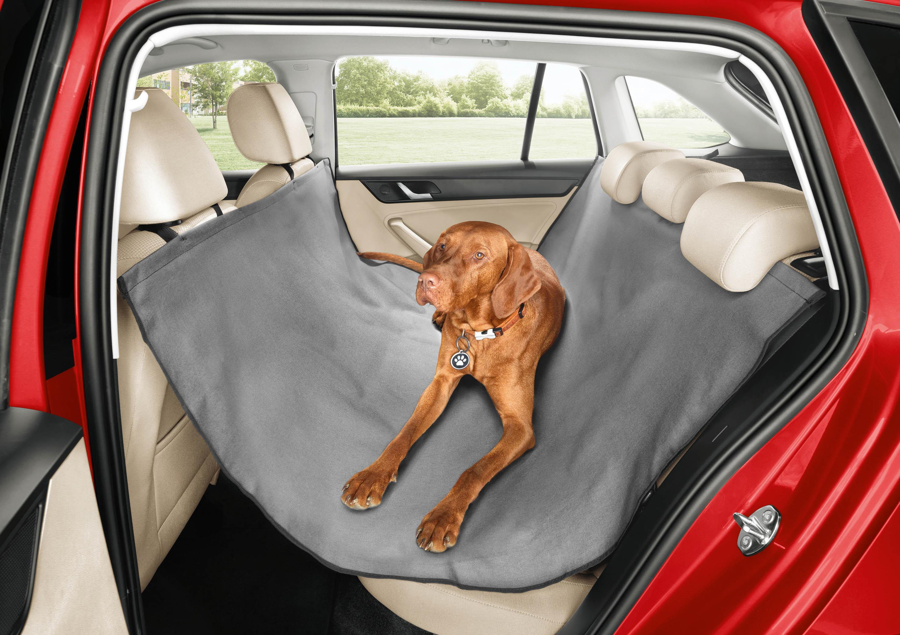 image of a dog in a hammock on back seat of car
