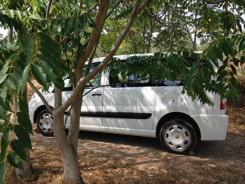 7 Seater And 9 Seater Cars Are Still Available For Your Christmas Break
