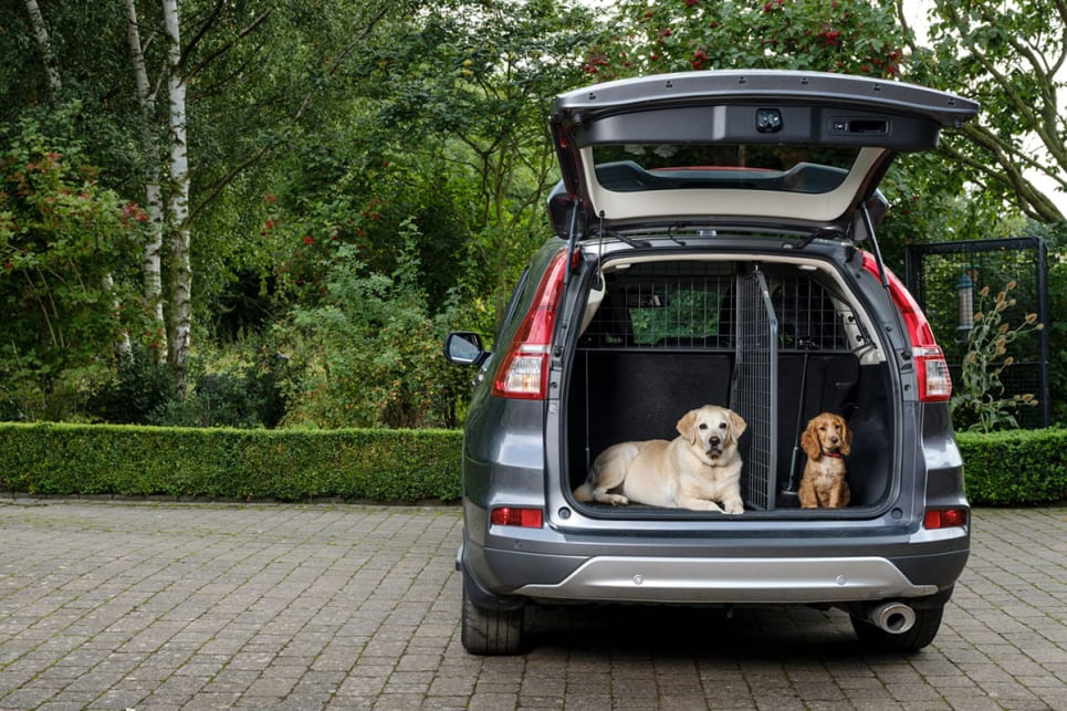dog car barrier the best cargo divider for your car car advice carsguide. Black Bedroom Furniture Sets. Home Design Ideas