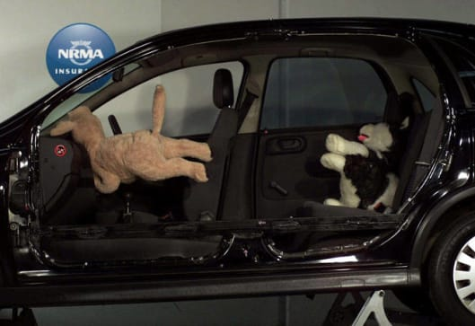 How To Keep Your Pets Safe In Cars Car News Carsguide