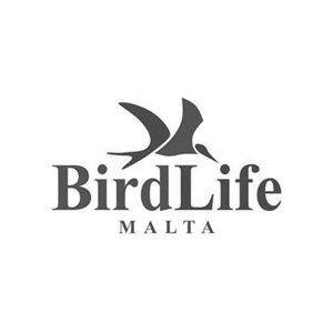 BirdLife Malta - Interactive Design & Development