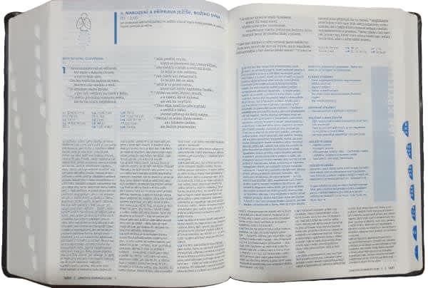 Bible-2-1