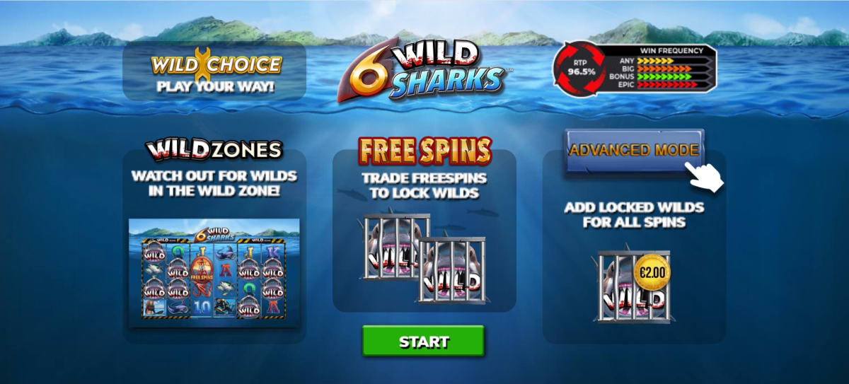 6 wild sharks splash-screen