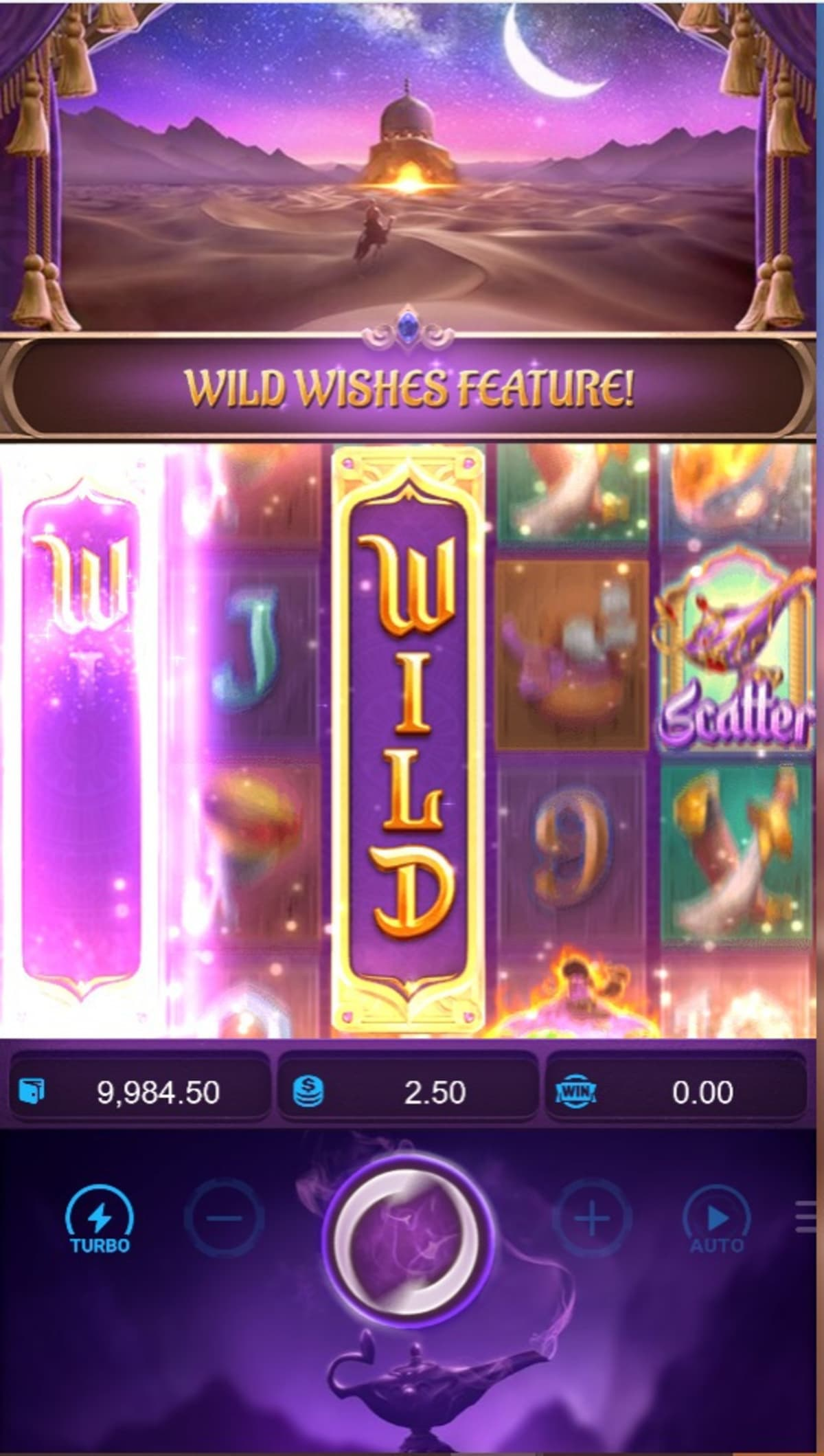 Wild Wishes Feature pic