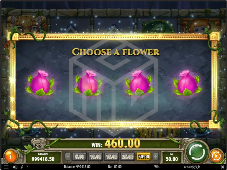 Rainforest_Magic_-_Entering_Free_spins_round