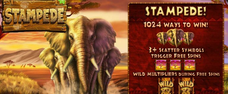 New Slot Review Stampede