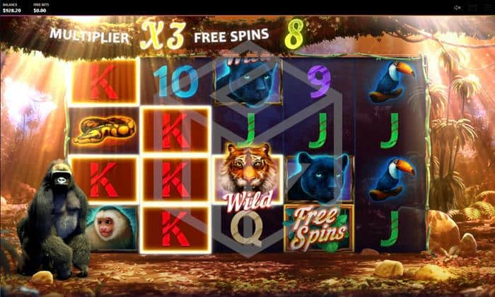cayetano gaming - dark jungle. Image showing reels during bonus feature