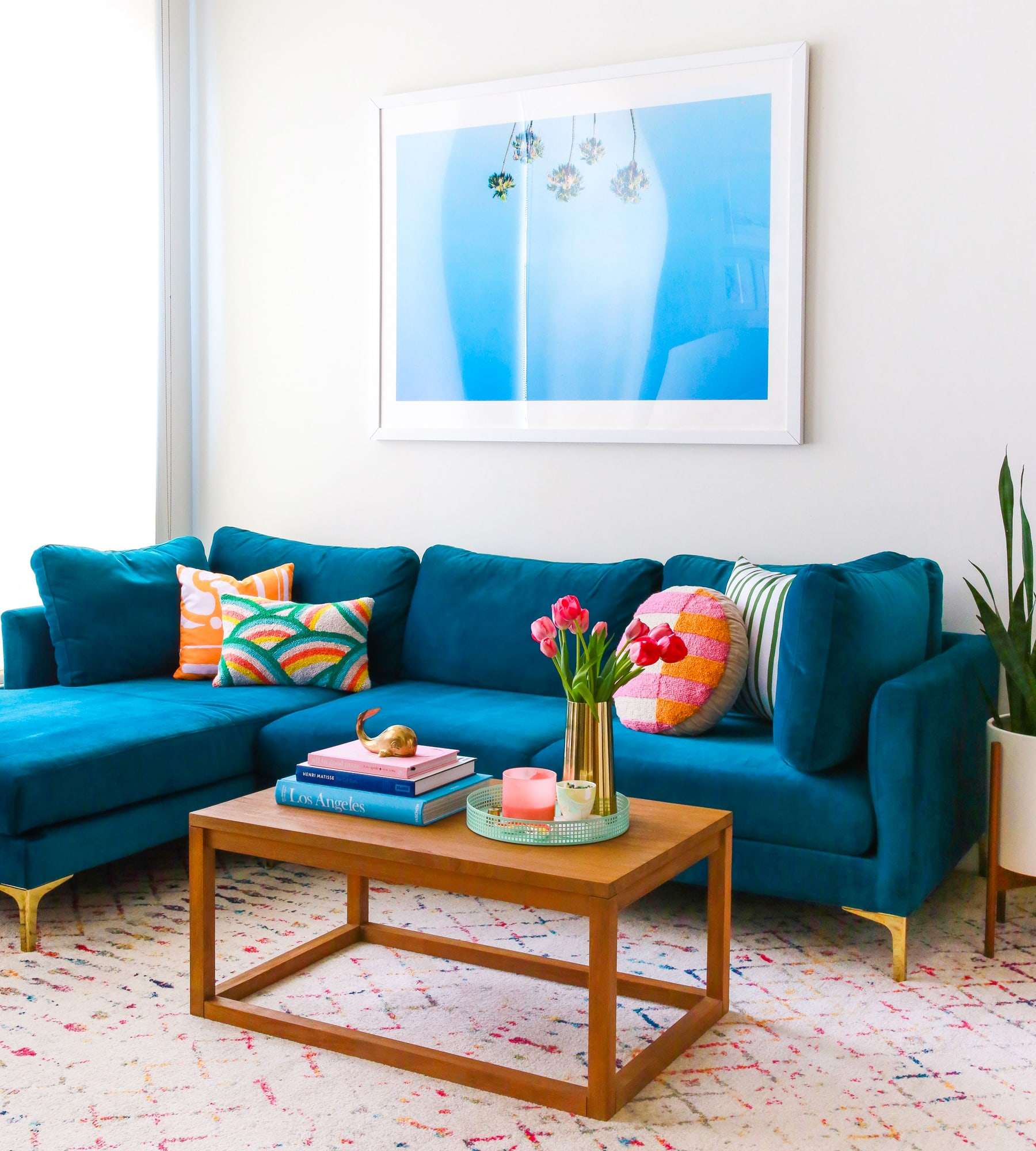teal velvet sofa, coffee table, potted plant and rainbow print rug in a brightly lit living room
