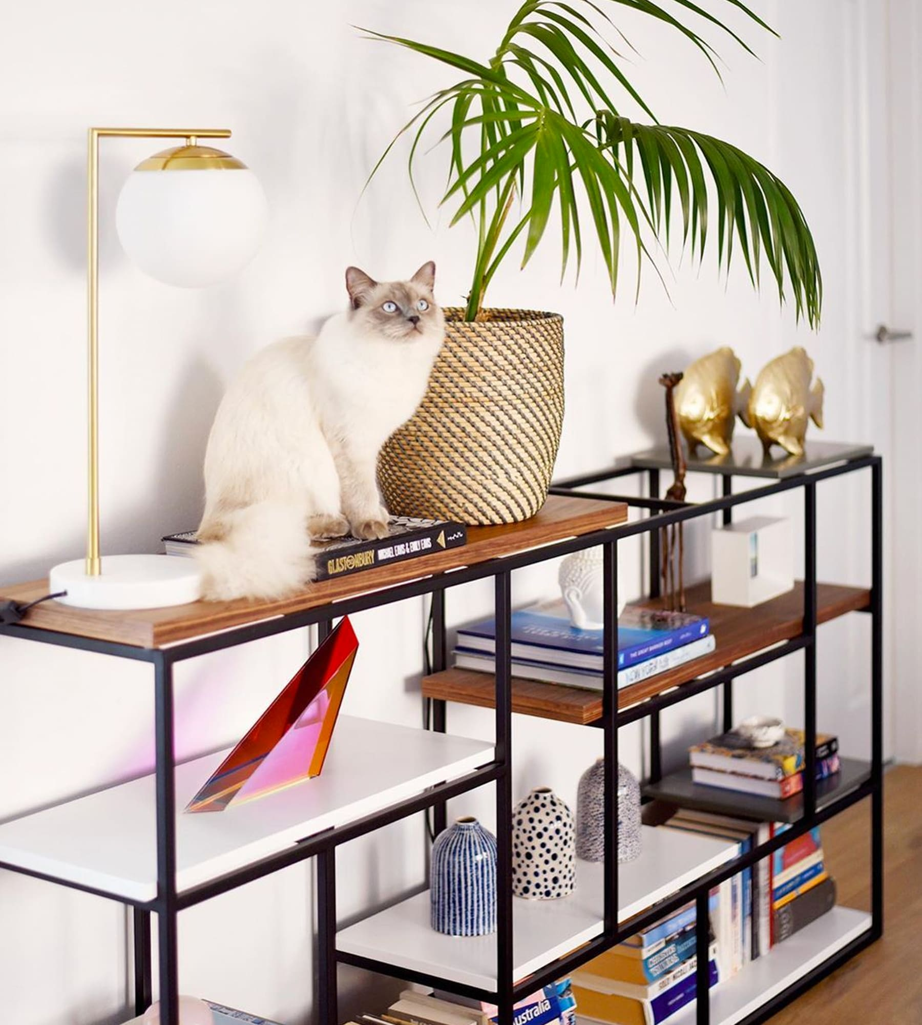 multifunctional shelf and console table with home accessories
