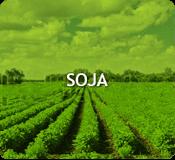 Custos de produção - Soja