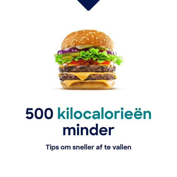 500kcal