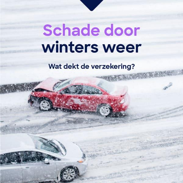 Schade-winters-weer-09