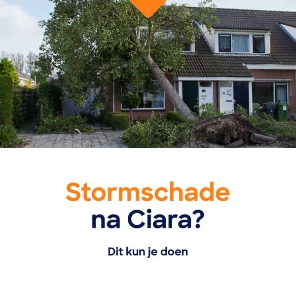 stormschade-071
