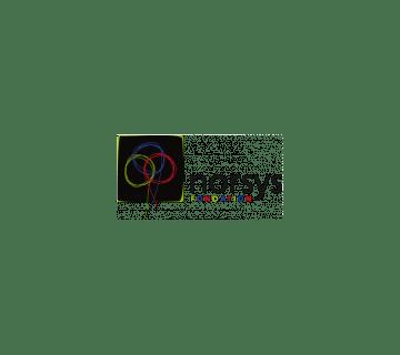 Logo - NORSYS