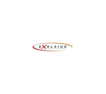 Logo - EXELSIUS