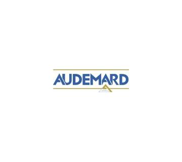 Logo - GROUPE AUDEMARD